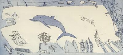 Sydney Harbour dolphin