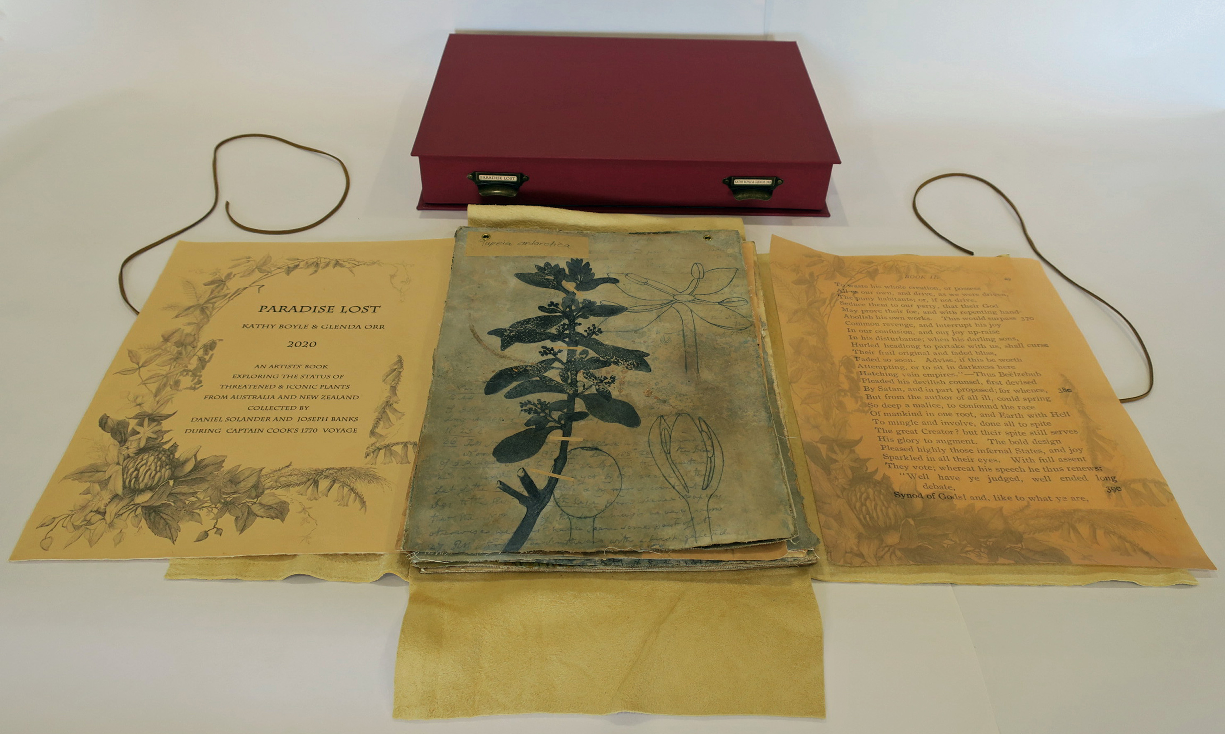Boyle-Orr_Kathy-Glenda_Paradise Lost_open book and Solander box