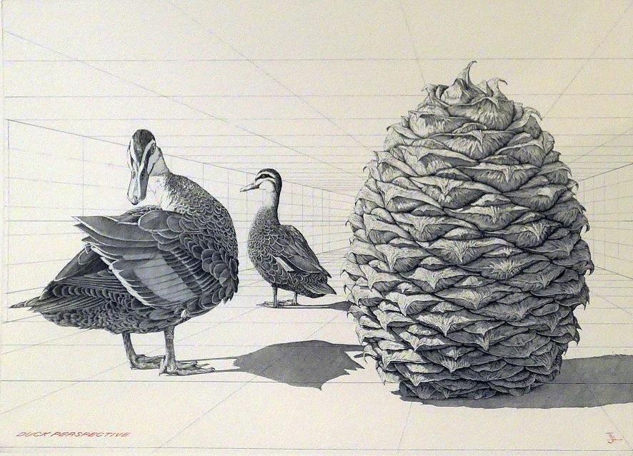 Duck Perspective