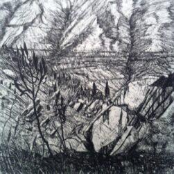 Mt Lyell II