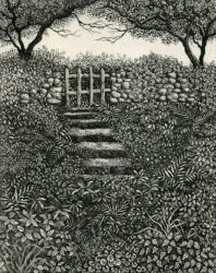 The end of the garden