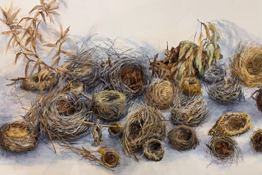 24 nests