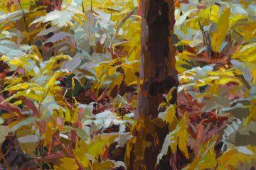 Mary Tonkin – Paddington Art Prize 2020