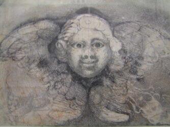 Face of an angel (627)