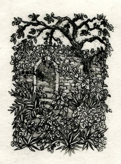 Faerie garden