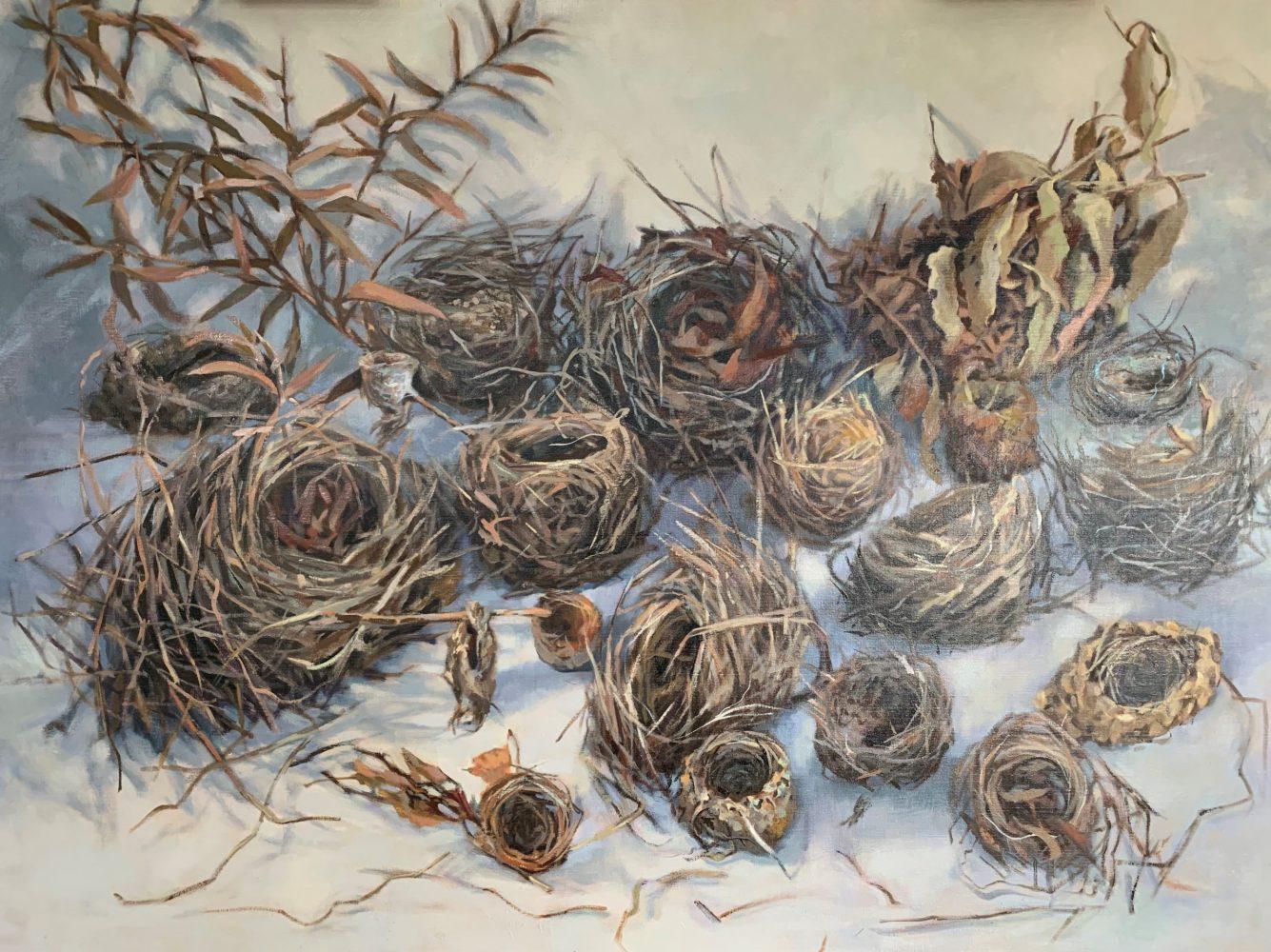 20 Nests Habitat 100
