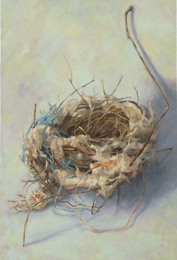 Habitat 109 – nest with wool