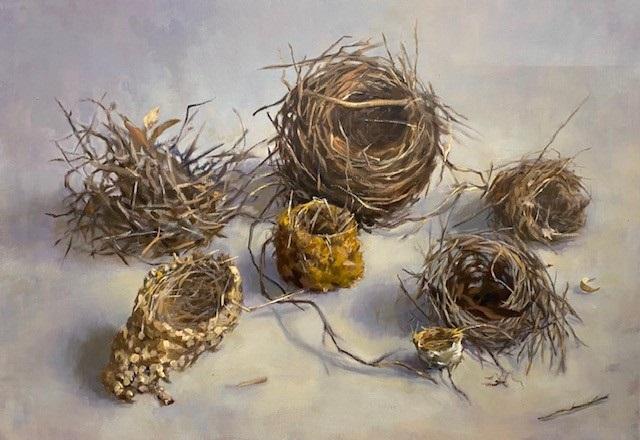 Habitat 107 – seven nests