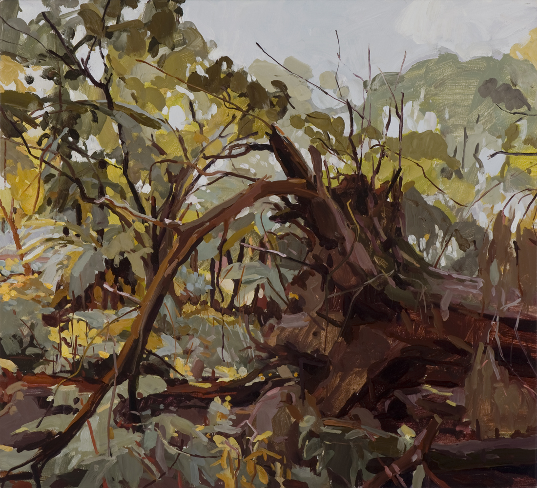 Rosalind Atkins, Philip Davey, David Frazer and Mary Tonkin – The Big Tree and Other Landscapes From the Whitehorse Art Collection