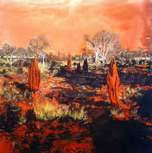 Burnt patch at Handover Camp