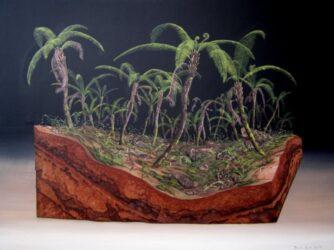 Tract 33 (Tree fern gully)