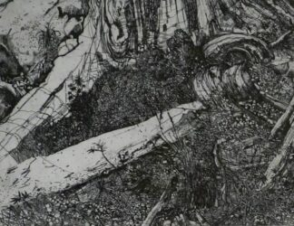 Elsewhere world fragment No. 31