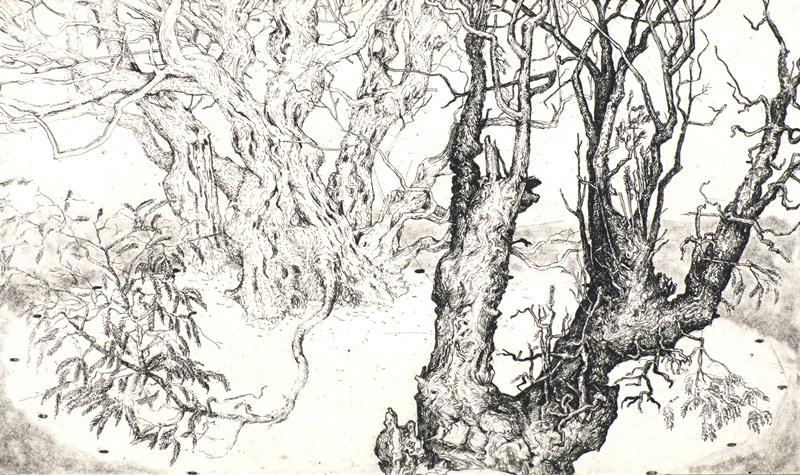 Fortingal Yew