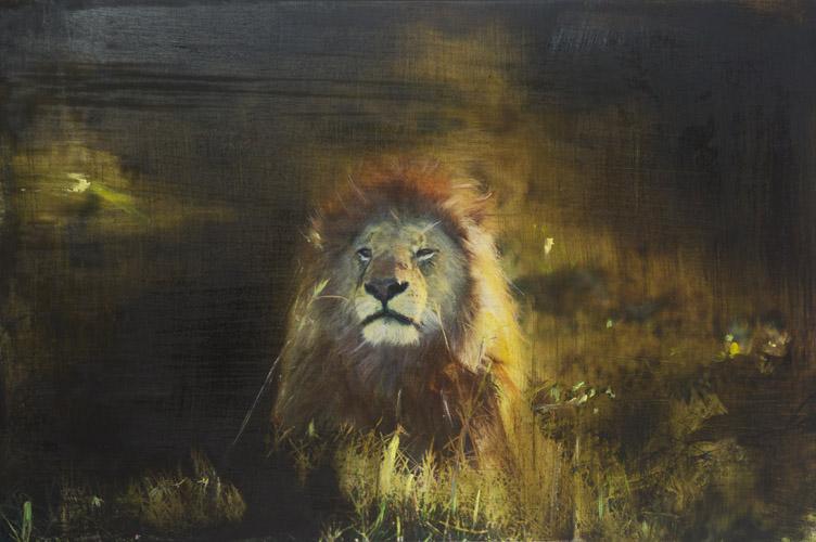Panthera leo II