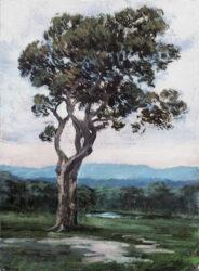 The osetopath's tree