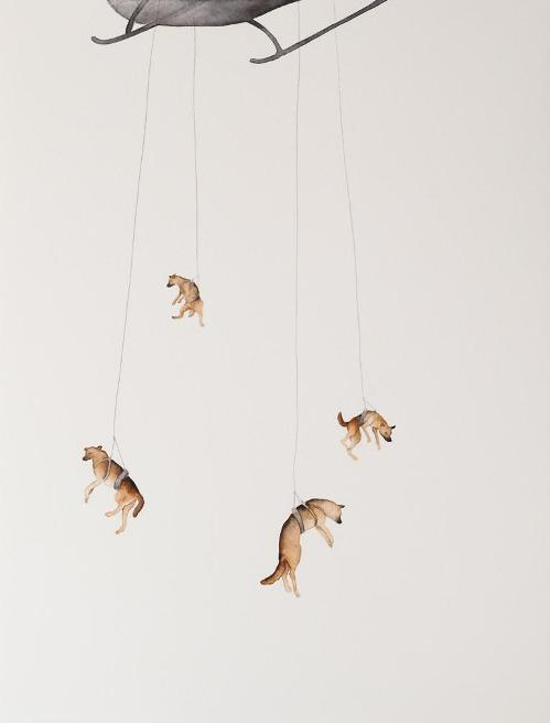 Canine corps