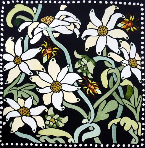 Flannel flowers II