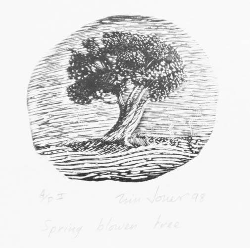 Spring blown tree