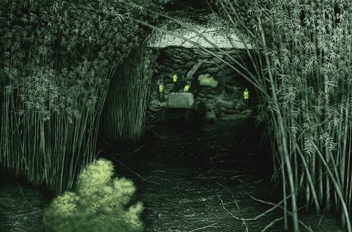 Fluorescence II