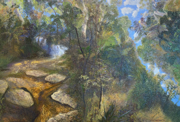 Rainforest and web Goomoolahra