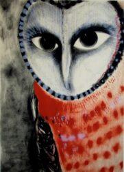 Akun eagle