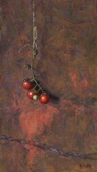 Pomodorini on red rust