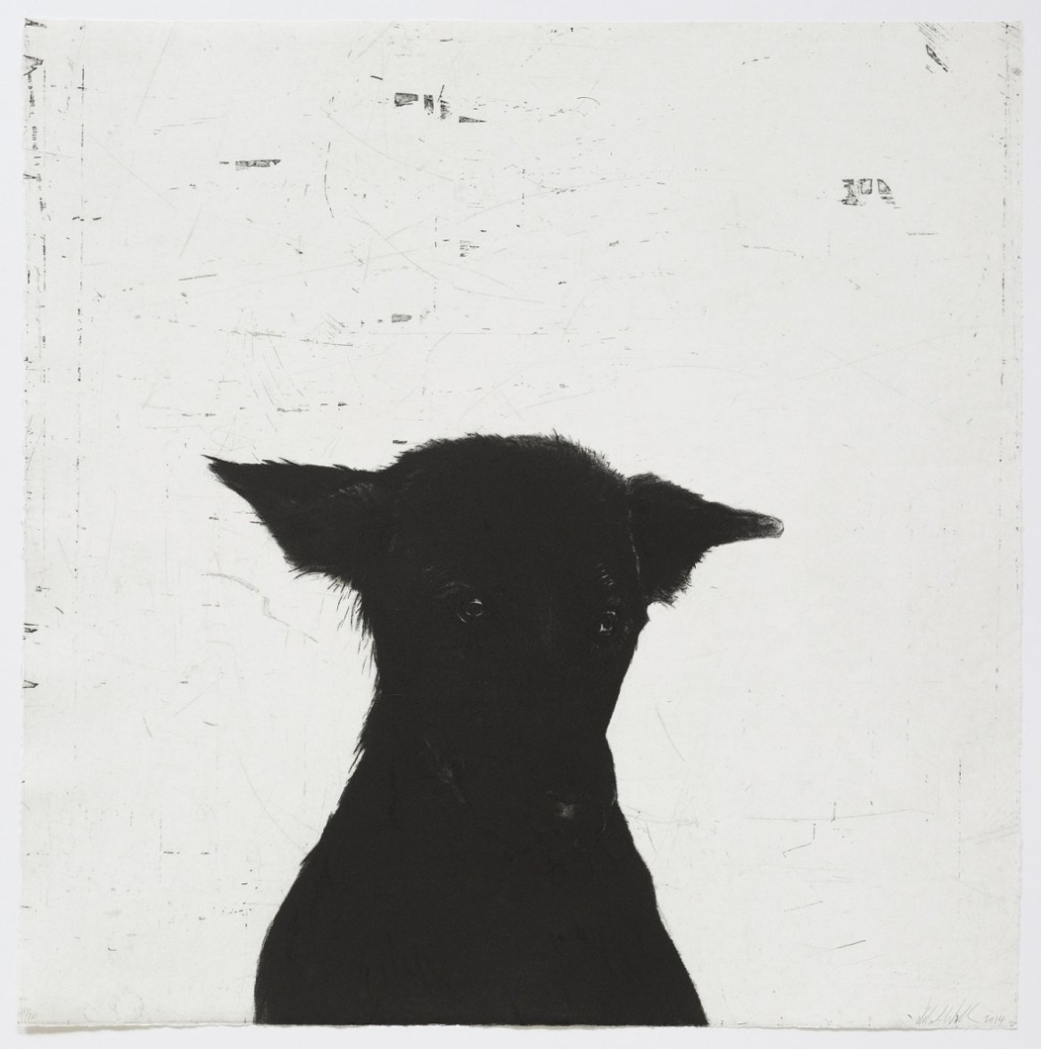 The dog itself
