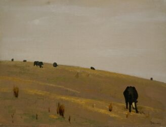 Cattle on a hill
