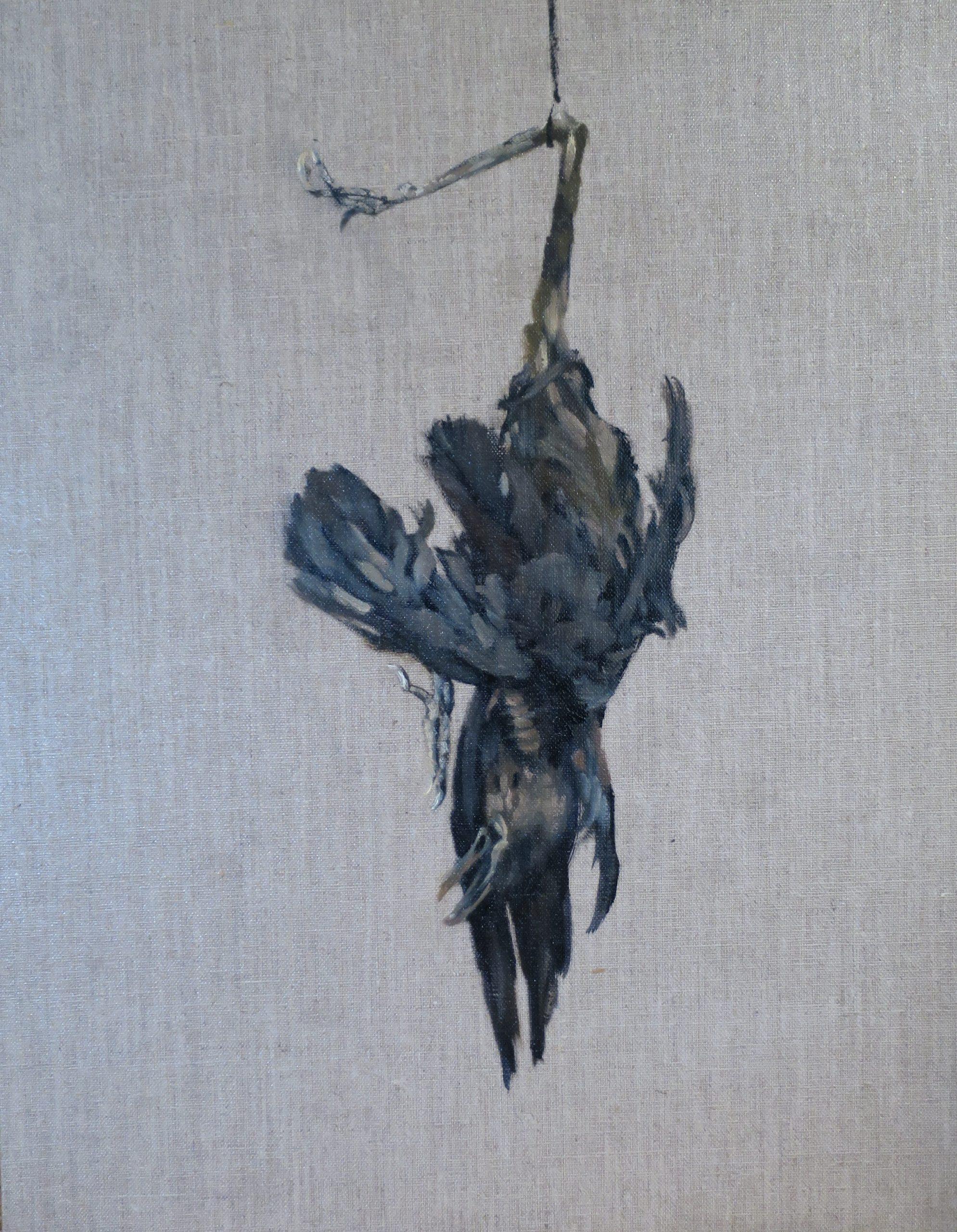 Study of a Blackbird