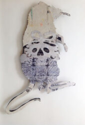 Bush baby – Long-nosed critter #3