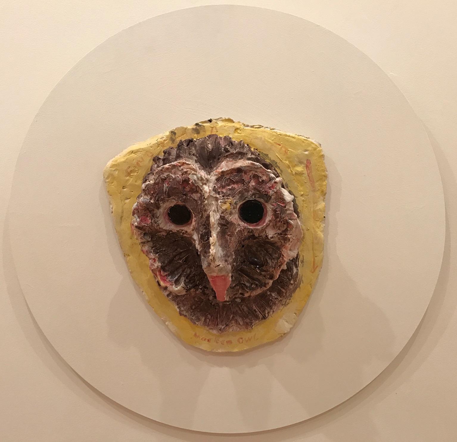 Hooded owl