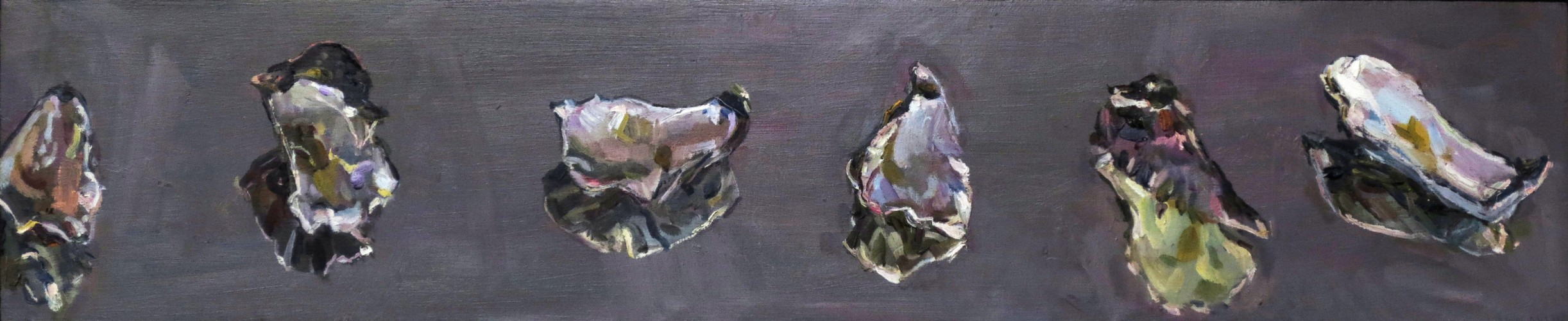 Oyster shells (with reflection)