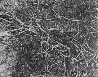 Elsewhere world fragment No. 58