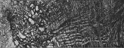Elsewhere world fragment No. 70