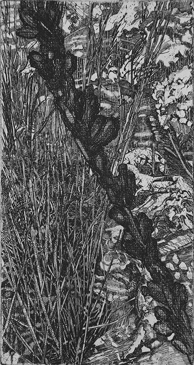 Elsewhere world fragment No. 76