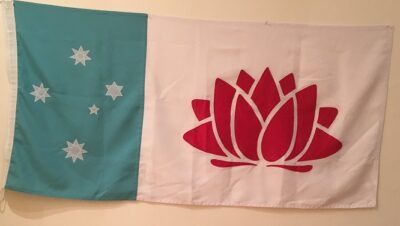 The new flag for New South Wales