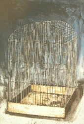 Untitled (cage 3)