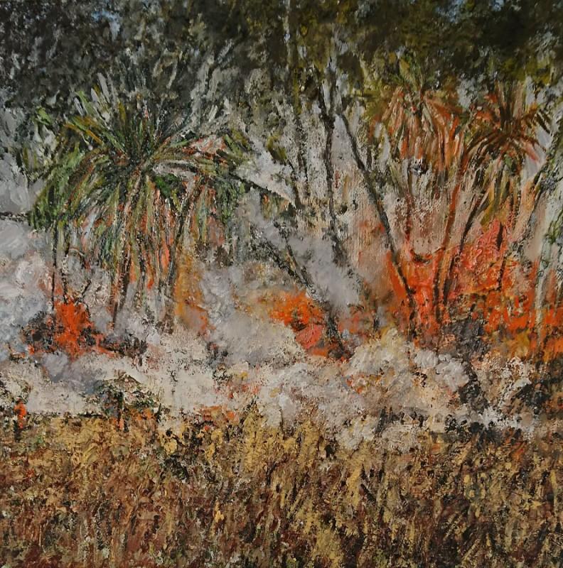 MANDY MARTIN – Savannah burning #6