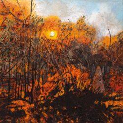 Mandy Martin – Burning, Blackall