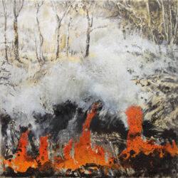Mandy Martin – Fire work #2