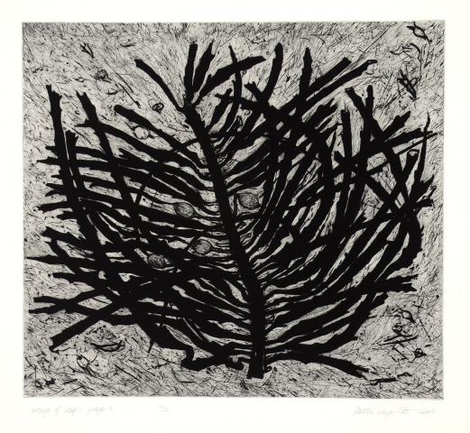 Wings of kelp – page 4