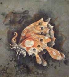 Todaiji butterfly