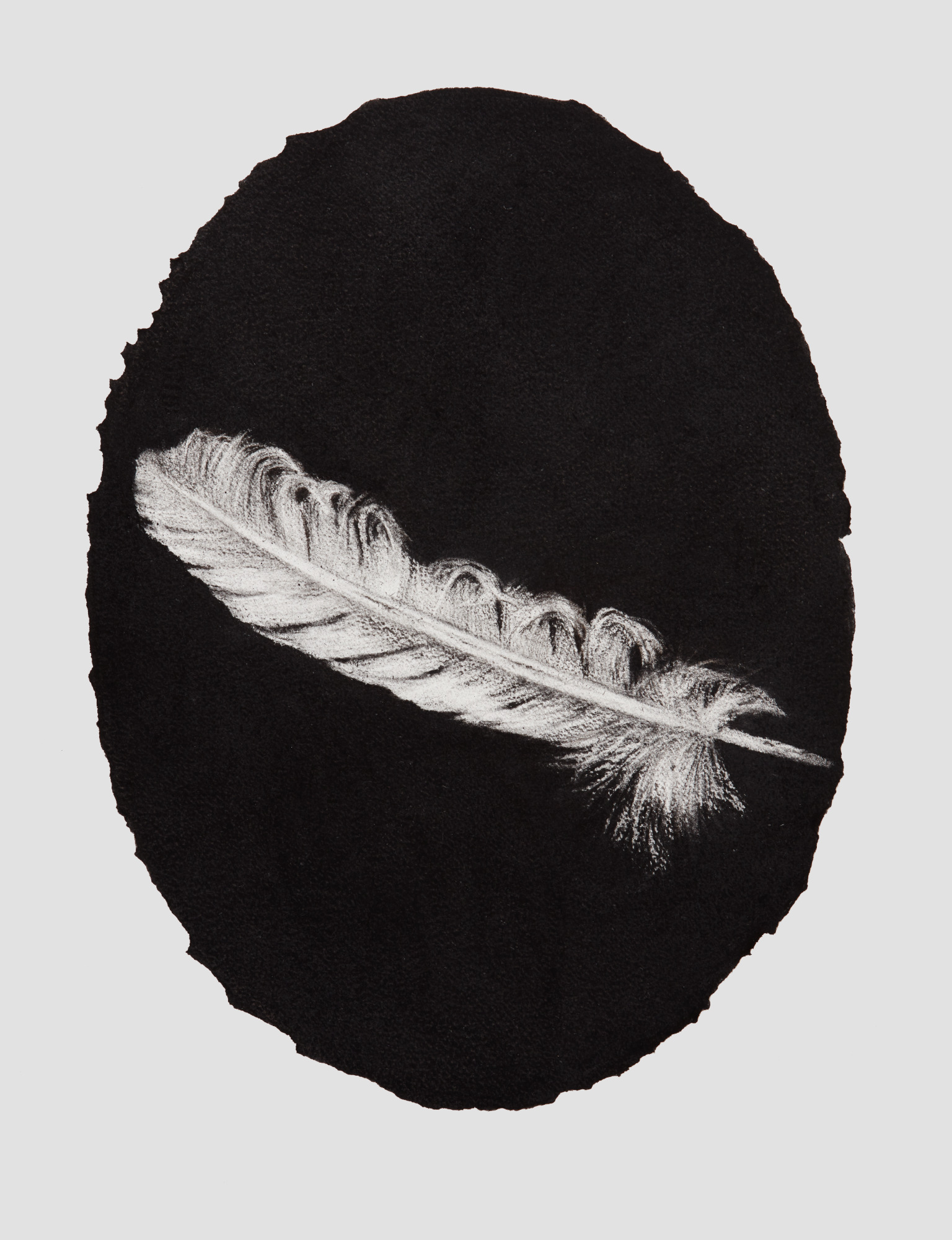 Oval portrait feather