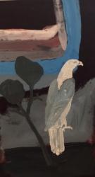 Sea eagle and river