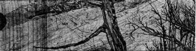 Elsewhere world fragment No. 85 (2nd State)