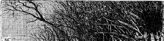 Elsewhere world fragment No. 56 (4th State)