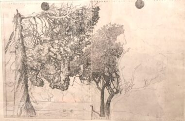 Mungo trees and two black suns (study)