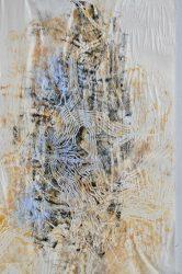 JOHN WOLSELEY – 101 Insect Life Stories No. 14:  Kamarooka Grey Box Beetle