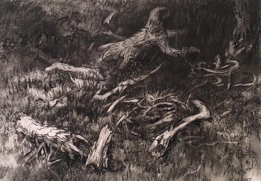 Fallen banksia
