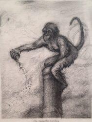 The naughty monkey